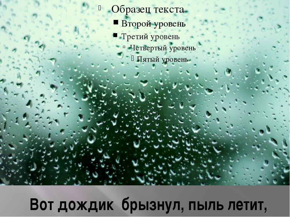 Вот дождик брызнул, пыль летит,