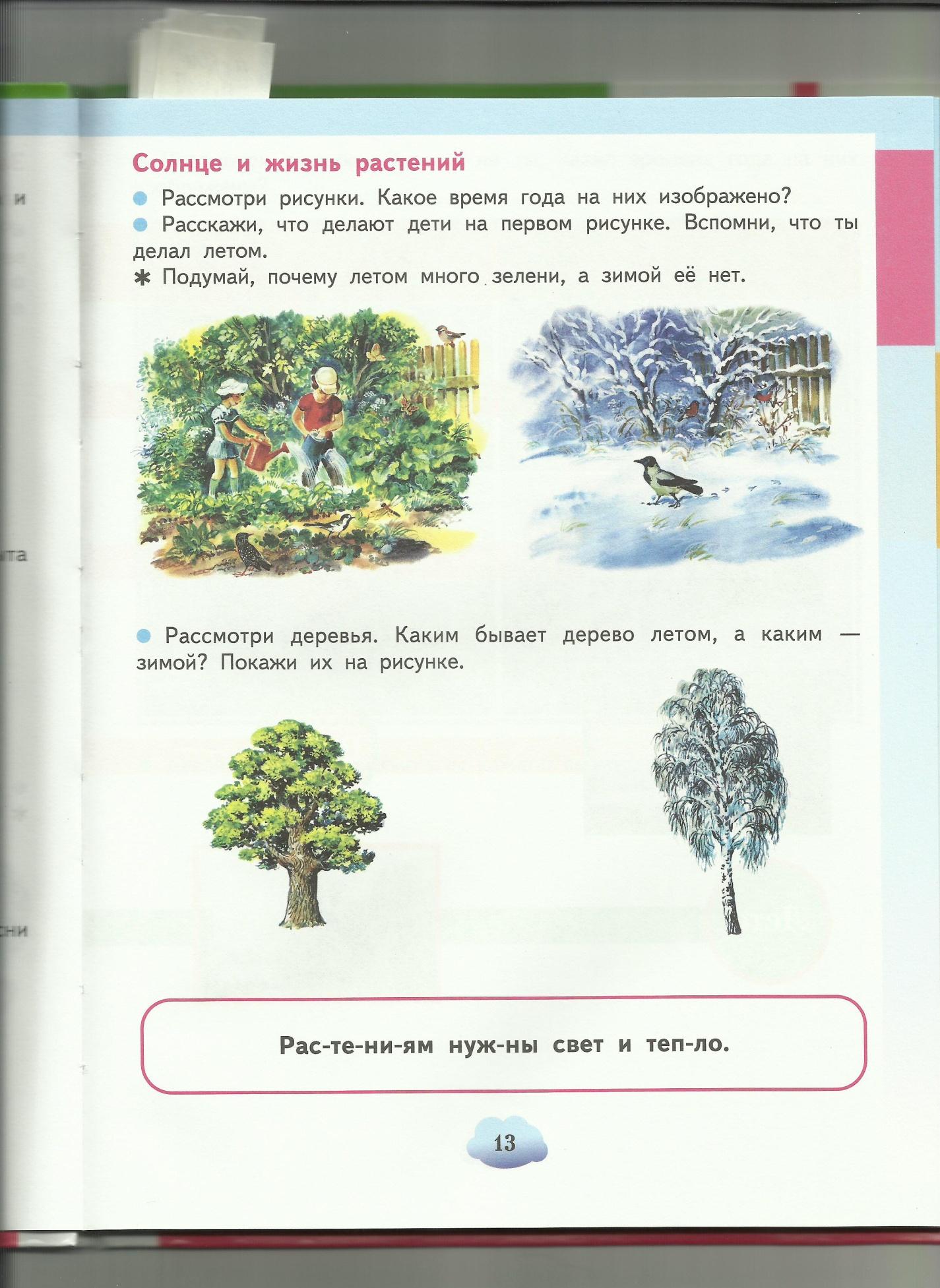 C:\Users\пр\Desktop\папка растения7\солнце и жизнь растений.jpg
