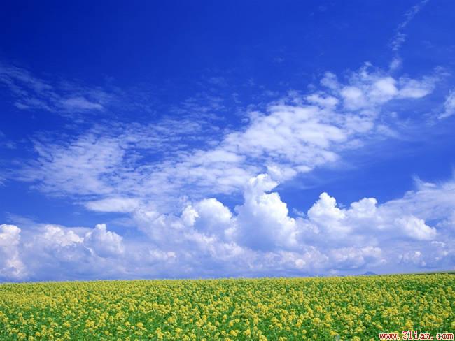 http://img3.3lian.com/2006/012/02/022.jpg