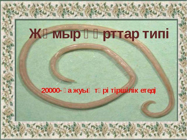 Тип Круглые черви Жұмыр құрттар типі 20000- ға жуық түрі тіршілік етеді