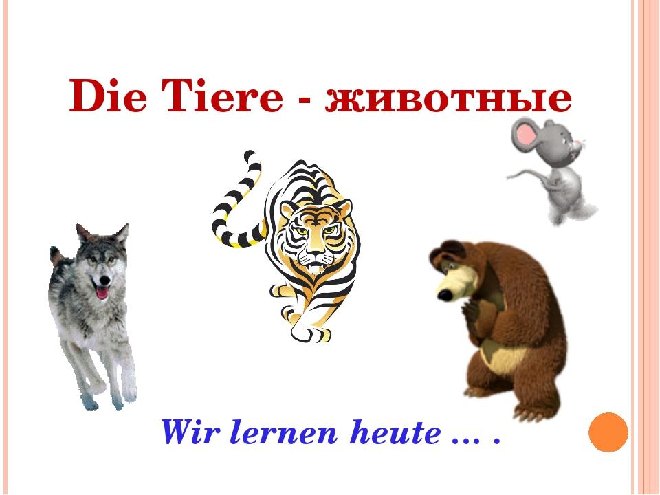 Die Tiere - животные Wir lernen heute … .