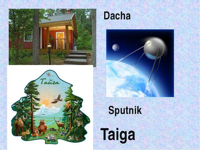 Taiga Sputnik Dacha