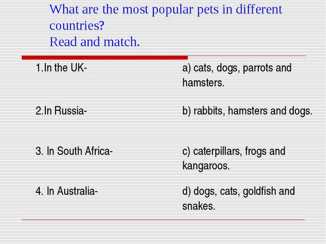 What are the most popular pets in different countries? Read and match.