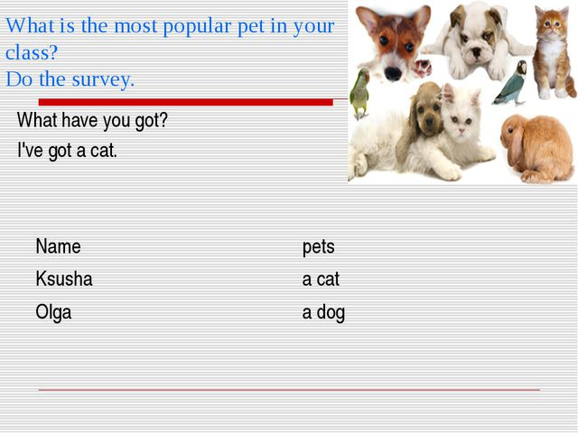 What is the most popular pet in your class? Do the survey. What have you got?...