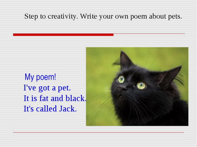 Step to creativity. Write your own poem about pets. My poem! I've got a pet....