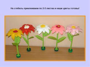 На стебель приклеиваем по 2-3 листка и наши цветы готовы!
