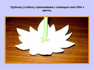 Трубочку (стебель) приклеиваем с помощью клея ПВА к цветку.