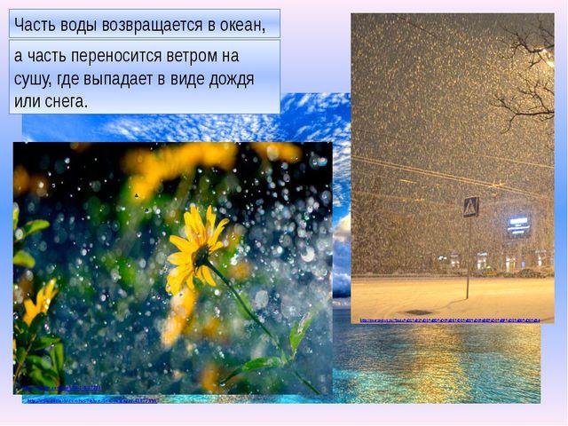 Часть воды возвращается в океан, а часть переносится ветром на сушу, где выпа...