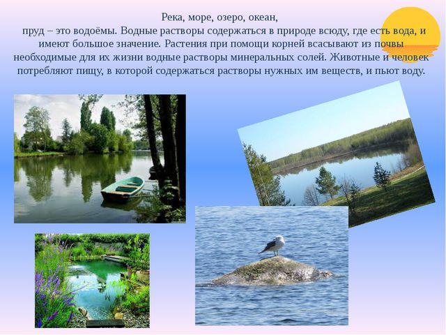 Река, море, озеро, океан, пруд – это водоёмы. Водные растворы содержаться в п...