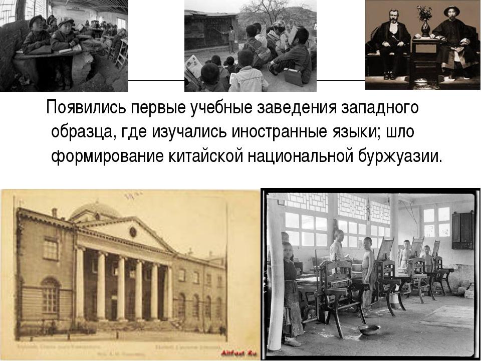 Появились первые учебные заведения западного образца, где изучались иностран...