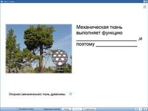 hello_html_66079b3e.jpg