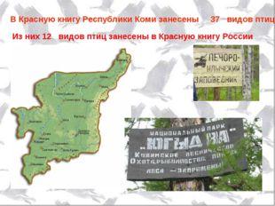 Из них 12 видов птиц занесены в Красную книгу России В Красную книгу Республи