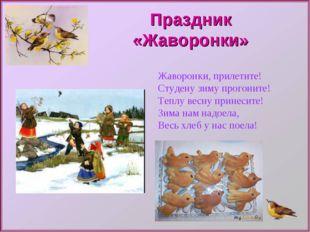 Праздник «Жаворонки» Жаворонки, прилетите! Студену зиму прогоните! Теплу весн