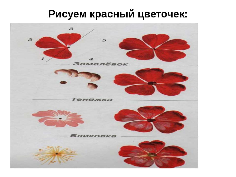 Рисуем красный цветочек: