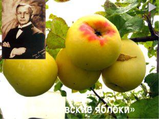 «Антоновские яблоки»
