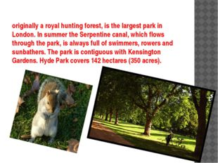 originally a royal hunting forest, is the largest park in London. In summer t