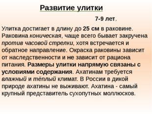 В природе Ахати́на живёт около 7-9 лет. Улитка достигает в длину до 25смв р