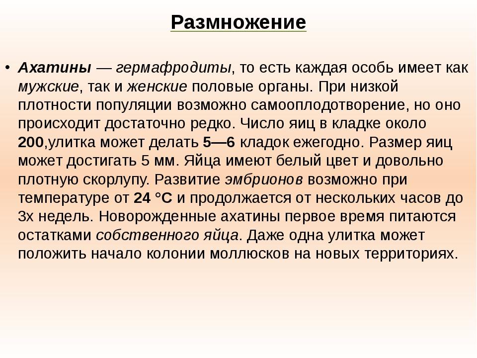 Размножение Ахатины—гермафродиты, то есть каждая особь имеет как мужские, т...
