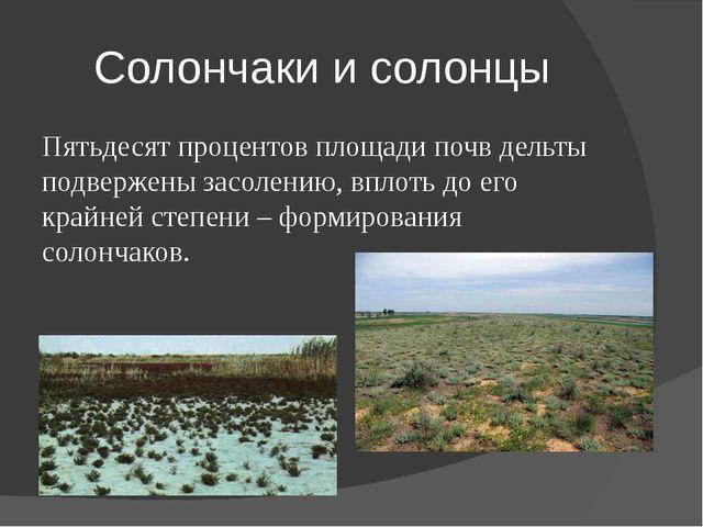 Солончаки и солонцы Пятьдесят процентов площади почв дельты подвержены засоле...