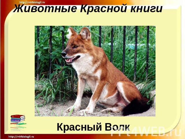 http://ppt4web.ru/images/111/14680/640/img0.jpg