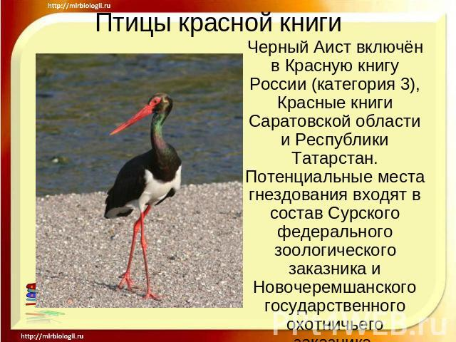 http://ppt4web.ru/images/111/14681/640/img11.jpg