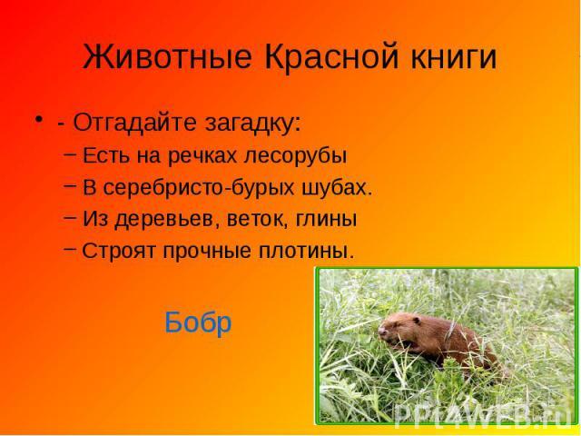 http://fs1.ppt4web.ru/images/95369/152479/640/img8.jpg