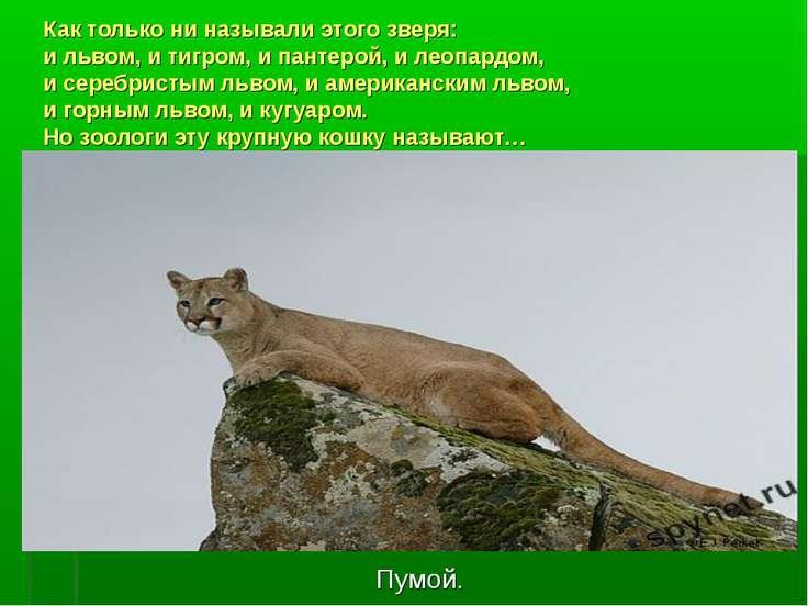 http://uslide.ru/images/19/26037/736/img1.jpg