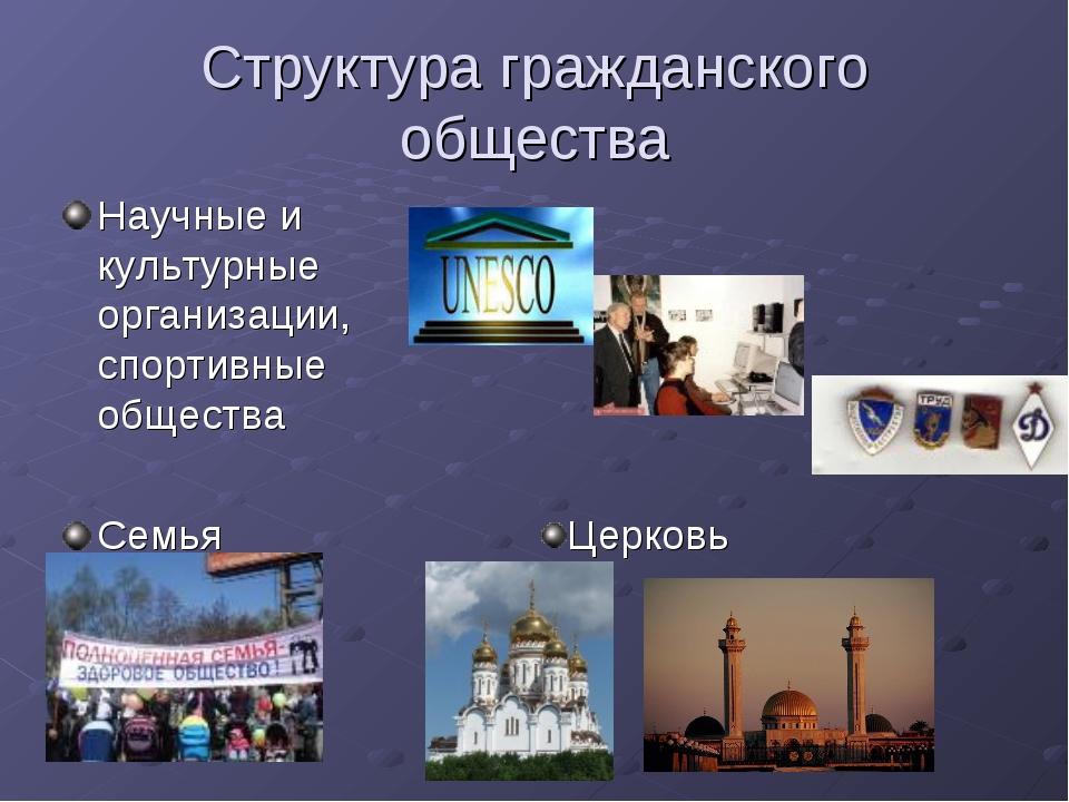Структура гражданского общества Научные и культурные организации, спортивные...
