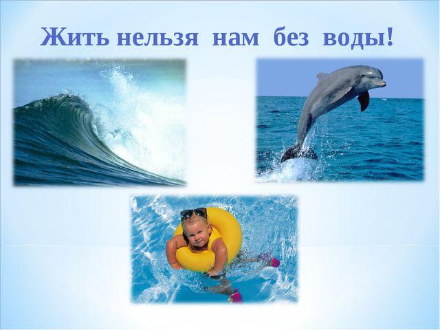 Жить нельзя нам без воды!