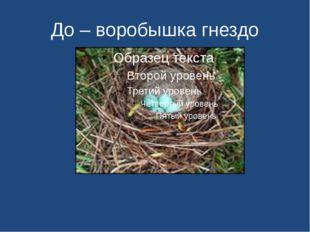 До – воробышка гнездо