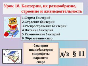 Урок 18. Бактерии, их разнообразие, строение и жизнедеятельность 1.Форма бакт