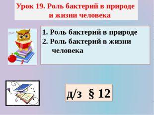 Урок 19. Роль бактерий в природе и жизни человека 1. Роль бактерий в природе