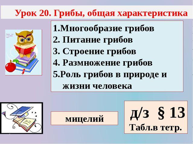 Урок 20. Грибы, общая характеристика 1.Многообразие грибов 2. Питание грибов...