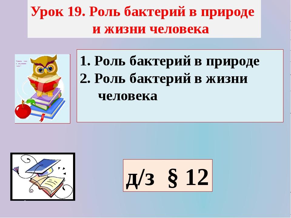 Урок 19. Роль бактерий в природе и жизни человека 1. Роль бактерий в природе...