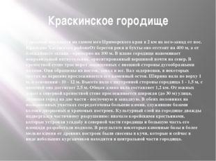 Краскинское городище Городище находится на самом юге Приморского края в 2 км