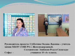 Руководитель проекта: Субботина Оксана Львовна – учитель химии МБОУ СОШ №6 г.