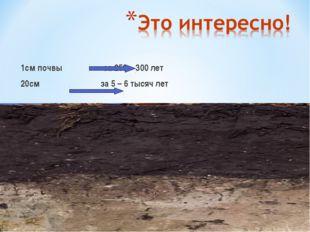 1см почвы за 250 – 300 лет 20см за 5 – 6 тысяч лет
