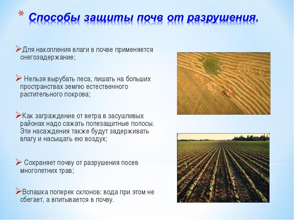 Для накопления влаги в почве применяется снегозадержание; Нельзя вырубать лес...