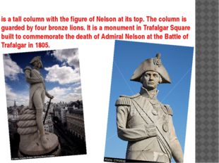 is a tall column with the figure of Nelson at its top. The column is guarded