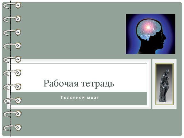 Головной мозг Рабочая тетрадь