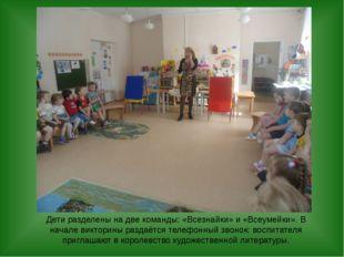 Дети разделены на две команды: «Всезнайки» и «Всеумейки». В начале викторины