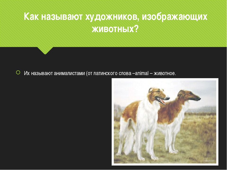 Как называют художников, изображающих животных? Их называют анималистами (от...