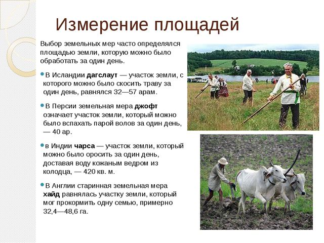 Измерение площадей Выбор земельных мер часто определялся площадью земли, кото...