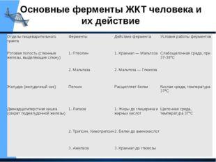 Основные ферменты ЖКТ человека и их действие Отделы пищеварительного тракта Ф