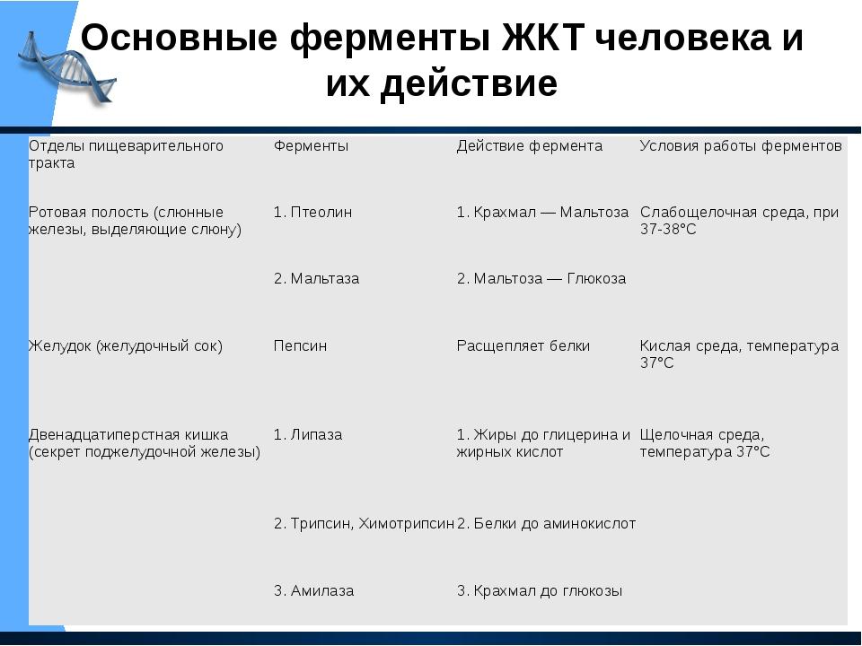 Основные ферменты ЖКТ человека и их действие Отделы пищеварительного тракта Ф...
