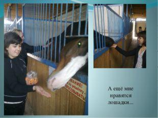 А ещё мне нравятся лошадки...