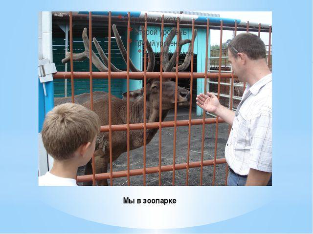 Мы в зоопарке
