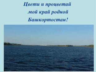 Цвети и процветай мой край родной Башкортостан!