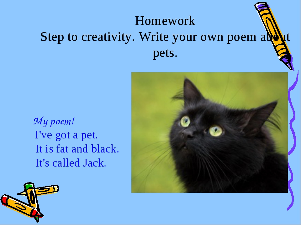 Homework Step to creativity. Write your own poem about pets. My poem! I've go...