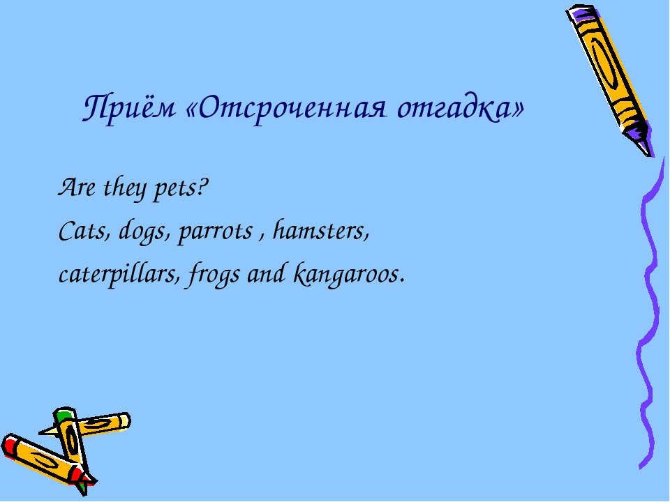 Приём «Отсроченная отгадка» Are they pets? Cats, dogs, parrots , hamsters, ca...